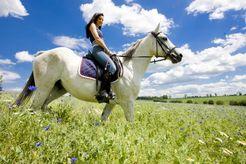 FORFAITS ACTIFS DU STOCK - Equitation