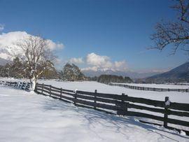 Winterlandschaft am Mieminger Plateau