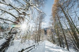 Winterspaziergang beim Naturhotel
