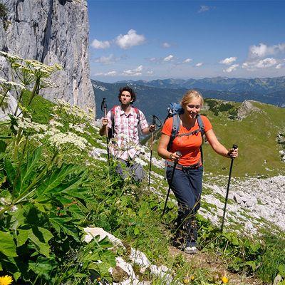 Offer: Hiking Special with Wellness on the Achensee - Das Karwendel - Ihr Wellness Zuhause am Achensee