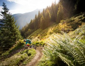 Large bike package -  A big mountain climb and downhill ride