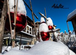 ADULTS ONLY SKI | M