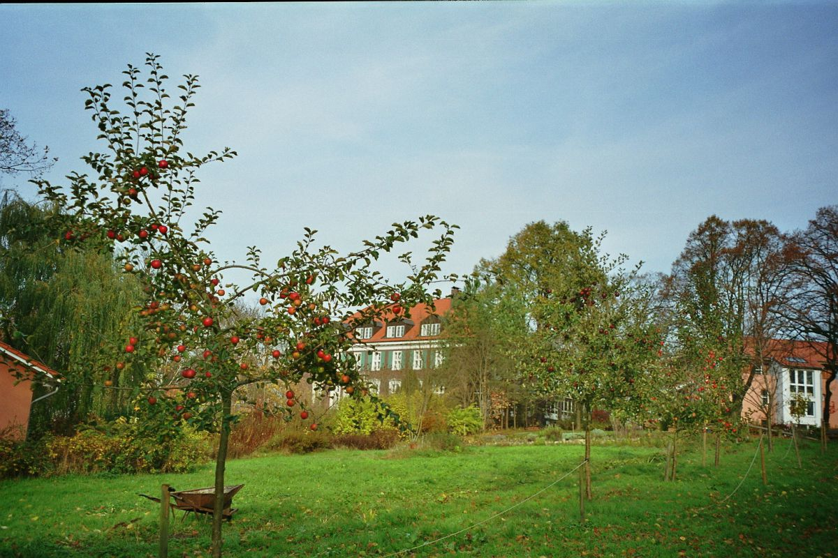Herbst in Stellshagen | 3 Übernachtungen