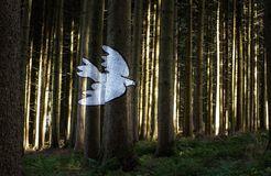 BIO HOTEL AmVieh-Theater: Wald der Bilder - AmVieh-Theater, Schwindegg, Bayern, Deutschland