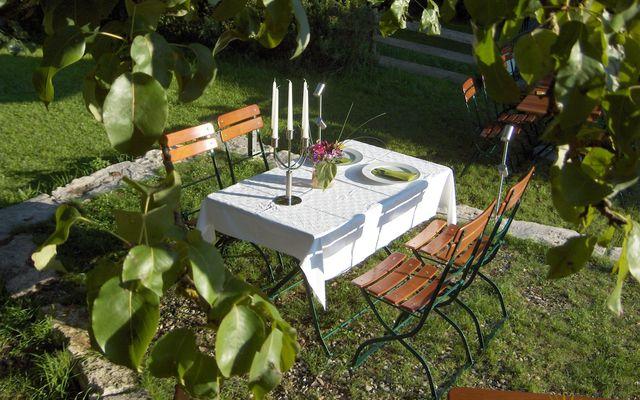 Abendessen im Obstgarten