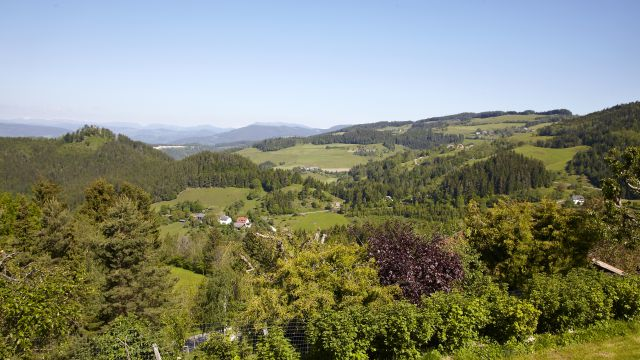 Last Minute Kärnten in Bio