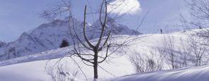 Alpine Wellness Woche für alle Sinne