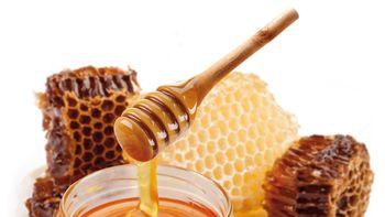 Biohotel Eggensberger Massage Honig Milch