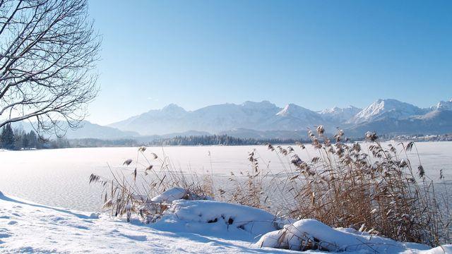 Winter-Fit-Angebot