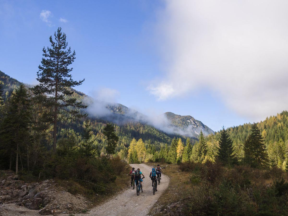 Trail und Fahrtechnik Camp