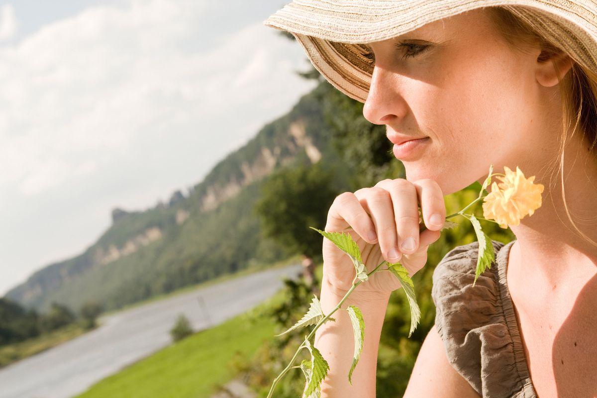 Blühender Frühling in Schmilka 100% Bio-Genuss für Naturliebhaber