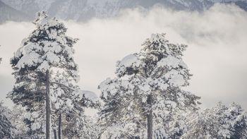 Biohotel Schweitzer Urlaub im Winter Landschaft