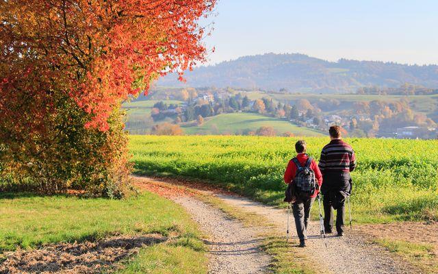 Biohotel Rose: Wandern im Herbst