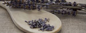 Hildegard Health Treatments: Lavender Vitality Treatment for Feet