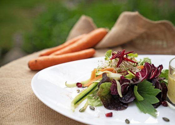 Bio-Küche - moor&mehr Bio-Kurhotel