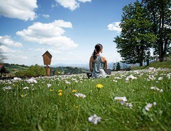 Top Deals: holistically building days - moor&mehr Bio-Kurhotel