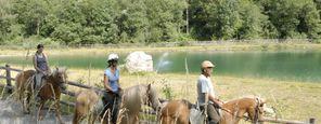Escursioni a cavallo per 2 ore