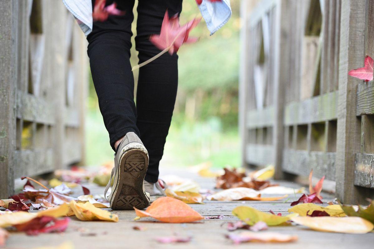 Wanderwoche im Goldenen Oktober