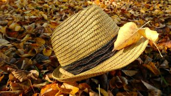 Goldener Herbst 7 = 6 im Sarotla