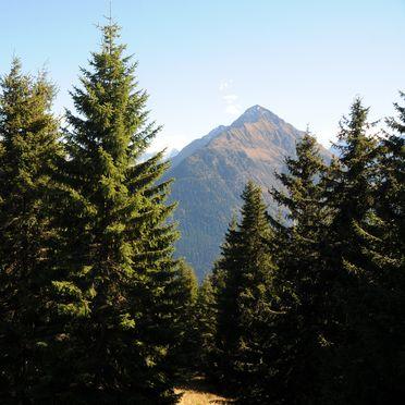 Aussicht, Brandstatt Alm in Finkenberg, Tirol, Tirol, Österreich