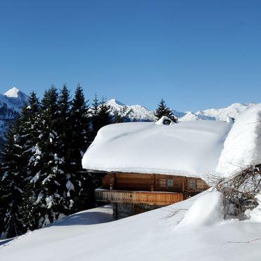 , Brandstatt Alm, Finkenberg, Tirol, Tyrol, Austria