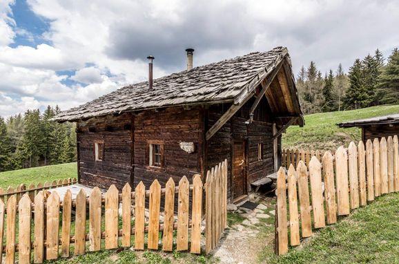 Sommer, Reh's Wiesen Hütte in Lüsen/Brixen, Südtirol, Trentino-Südtirol, Italien