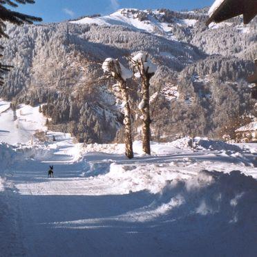 Umgebung, Haus Rösslhof, Goldegg, Salzburg, Salzburg, Österreich