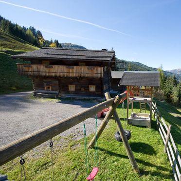 Sommer, Radlehenhütte, Großarl, Salzburg, Salzburg, Österreich