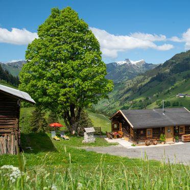 Summer, Hungarhub Hütte, Großarl, Salzburg, Salzburg, Austria