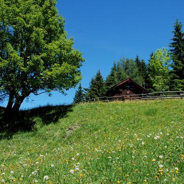 Karblickhütte, Summer