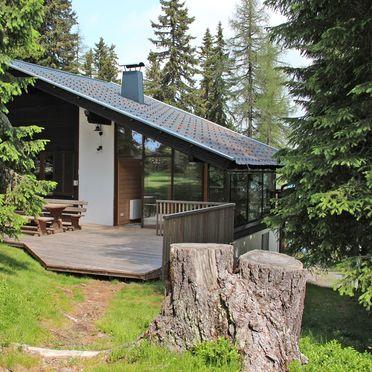 Summer, Alpine-Lodges Petra, Arriach, Kärnten, Carinthia , Austria