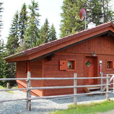 Aussenansicht, Alpine-Lodges Gertraud, Arriach, Kärnten, Kärnten, Österreich