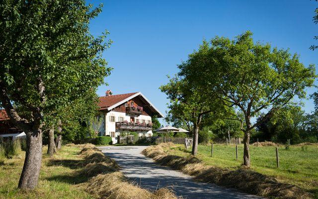 Biohotel Gut Sonnenhausen: Das Bauernhaus