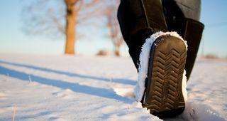 Winter Wander Wochen im Stillebach
