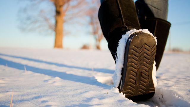Winter Wander Weeks