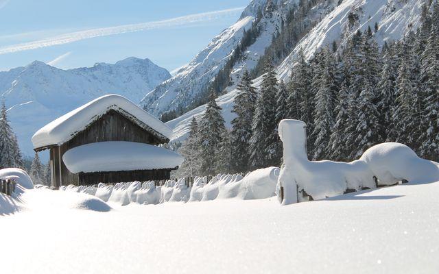 Biohotel Stillebach: Blick zur Wildspitze