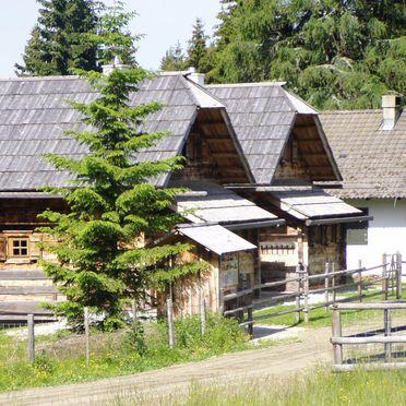Rueckansicht1, Alpine-Lodges Lisa, Arriach, Kärnten, Kärnten, Österreich