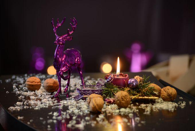 Weihnachten im FREUND