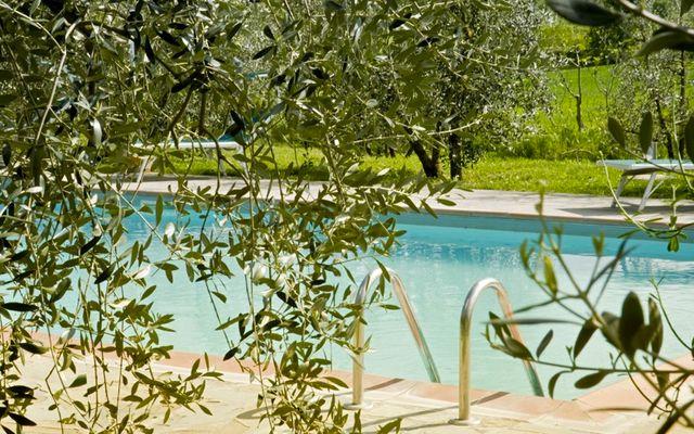 Biohotel La Pievuccia: Swimming Pool