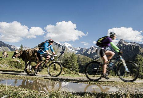 "Settimane ""Special-Bike"" | 08.08. - 29.08.2015"