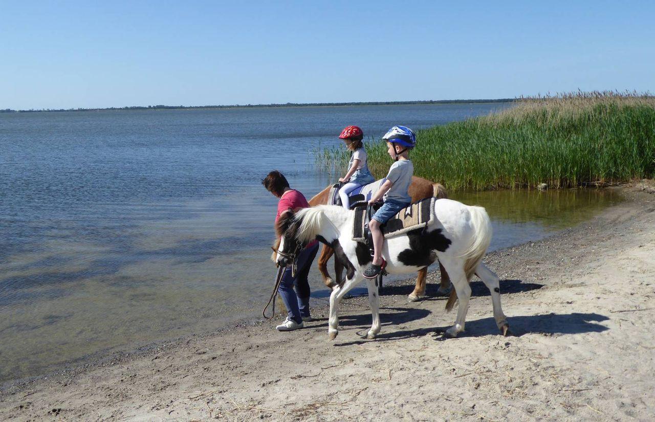 Biohotel Gut Nisdorf: Familienurlaub an der Ostsee