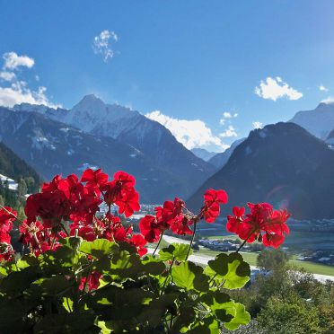 Aussicht, Bergchalet Klausner Kuschelsuite in Ramsau im Zillertal, Tirol, Tirol, Österreich