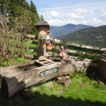 Neukam Hütte, Summer