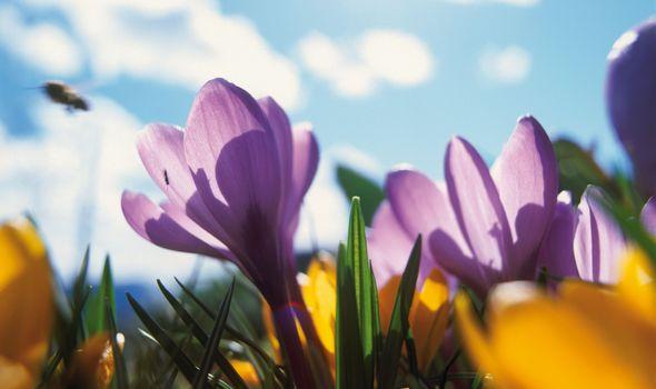 Frühlingstage im Quellenhof