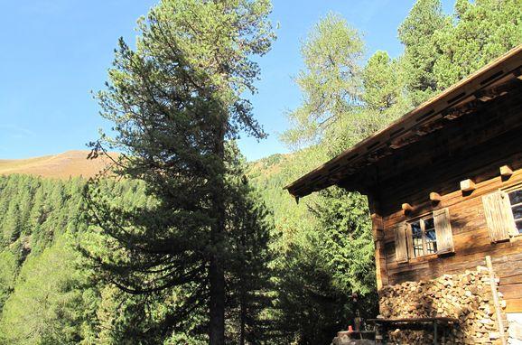 Sommer, Turracher Hütte, Ebene Reichenau - Turracher Höhe, Kärnten, Kärnten, Österreich