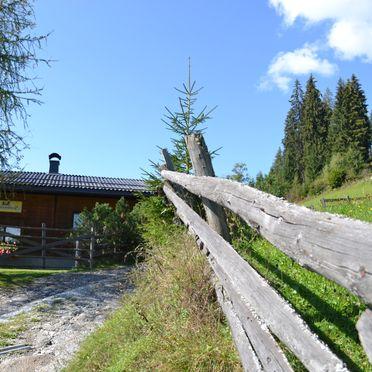 Ferienhaus Kammerer, Sommer