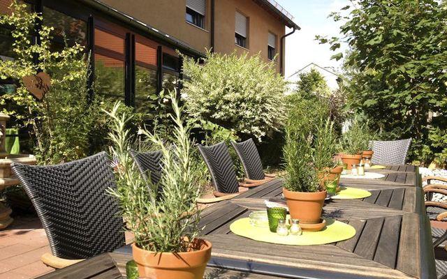 Biohotel Bayerischer Wirt: Terrasse