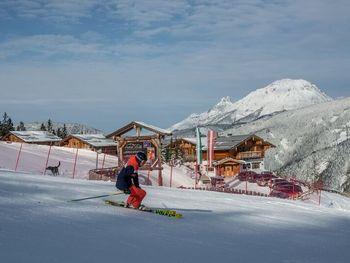 Chalet Dachstein  - Styria  - Austria