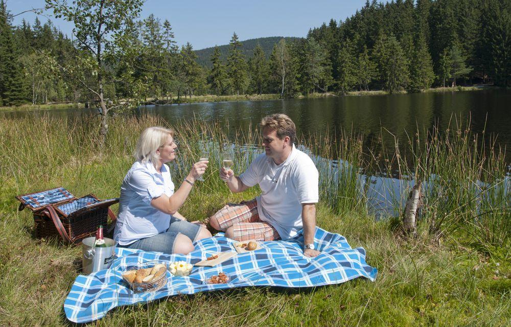 Romantisches Picknick zu Zweit!