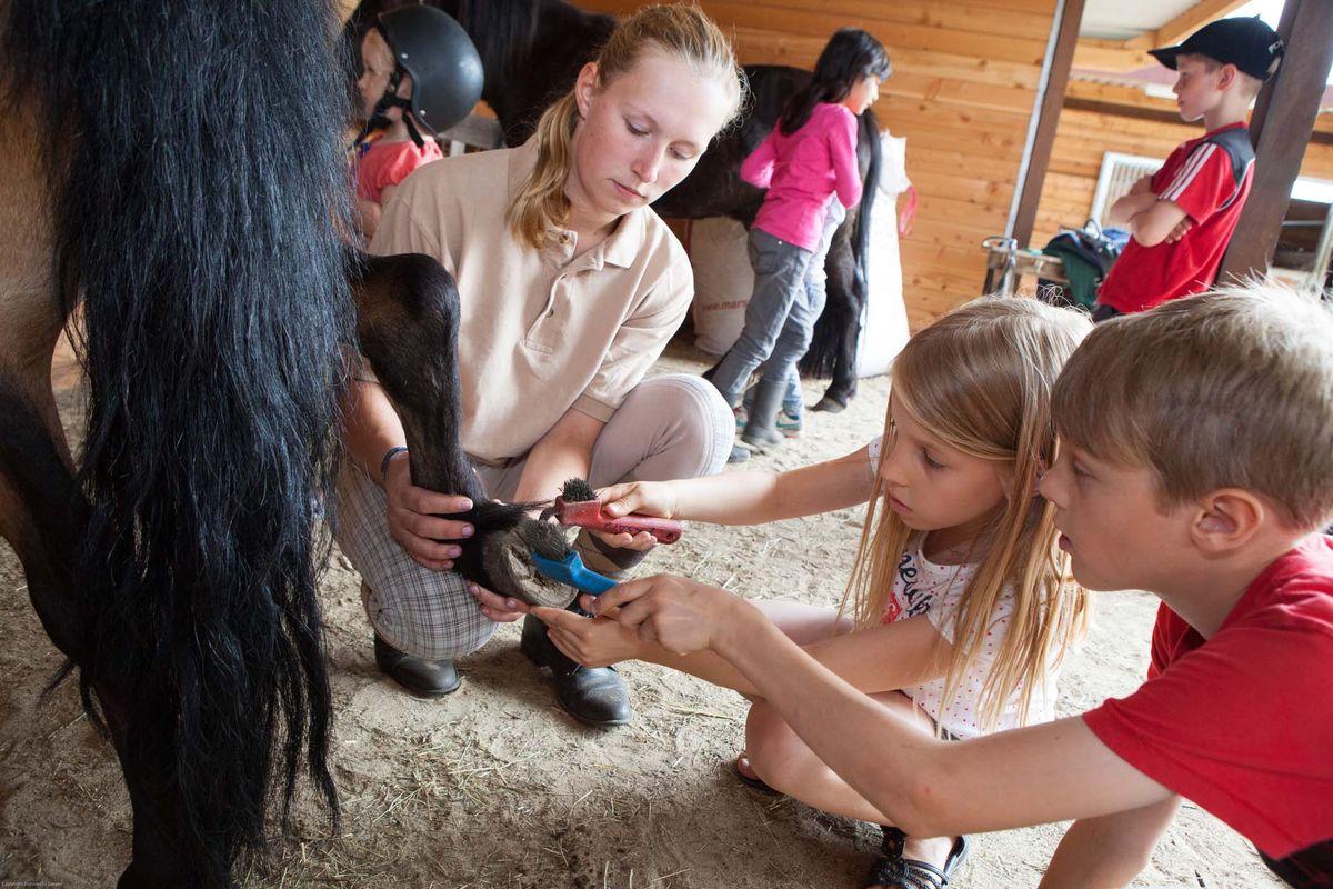 !! Reiterwoche für Pferdeliebhaber